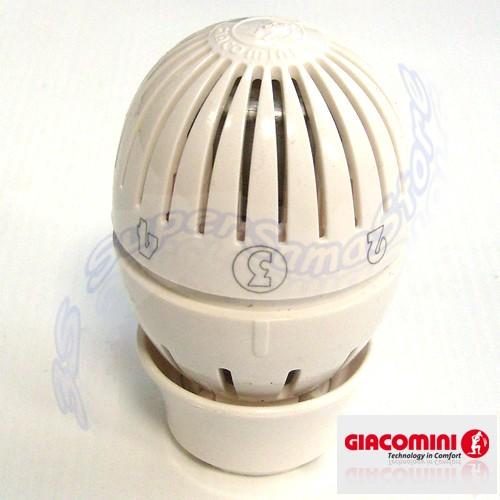 3s testina testa termostatica x valvola giacomini r470 for Testina termostatica